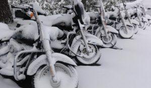 Het hele jaar verzekerd of winterstop?